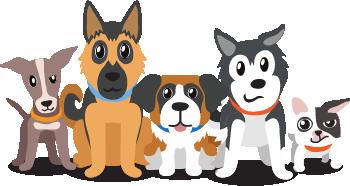 Waggo Dogs